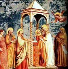 Presentazione al Tempio - Giotto da Bondone